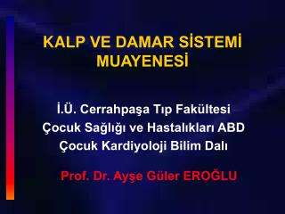 KA LP VE DAMAR SİSTEMİ  MUAYENESİ