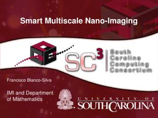 Smart Multiscale Nano-Imaging