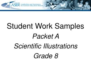 Student Work Samples  Packet A Scientific Illustrations Grade 8