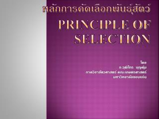 หลักการคัดเลือกพันธุ์สัตว์ Principle of Selection