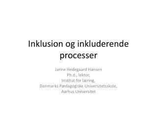 Inklusion og inkluderende processer