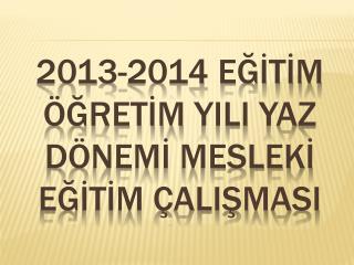 2013-2014  eğİtİm öğretİm YIlI  yaz  dönemİ meslekİ eğİtİm çalIşmasI