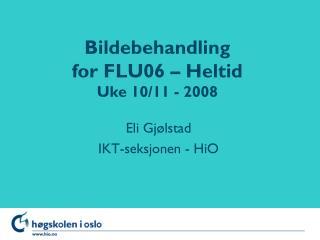 Bildebehandling for FLU06 – Heltid Uke 10/11 - 2008