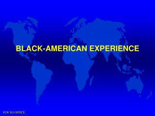 BLACK-AMERICAN EXPERIENCE