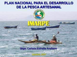 PLAN NACIONAL PARA EL DESARROLLO  DE LA PESCA ARTESANAL