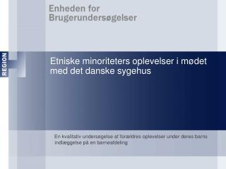 Etniske minoriteters oplevelser i mødet med det danske sygehus