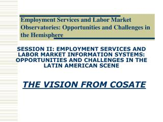 THE VISION FROM COSATE