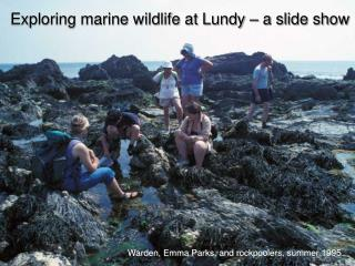 Warden, Emma Parks, and rockpoolers, summer 1995