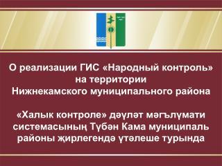 О реализации ГИС «Народный контроль» на территории Нижнекамского муниципального района