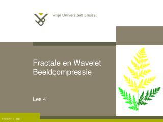 Fractale en Wavelet Beeldcompressie