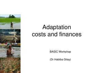 Adaptation costs and finances