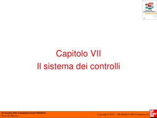 Capitolo VII  Il sistema dei controlli