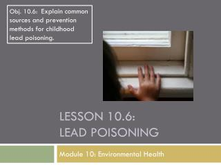 Lesson  10.6: Lead Poisoning