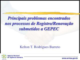 Principais problemas encontrados nos processos de Registro/Renovação submetidos a GEPEC