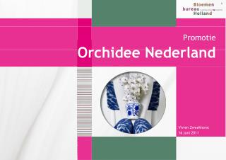 Orchidee Nederland