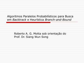 Algoritmos Paralelos Probabilísticos para Busca em  Backtrack  e Heurística  Branch-and-Bound