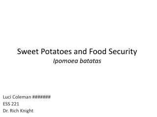HOW SWEET IS A SWEET POTATO