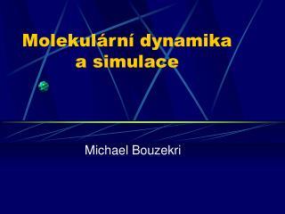 Molekulární dynamika a simulace