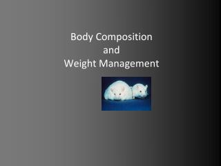 Body Composition  and Weight Management