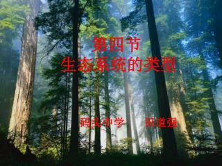 第四节        生态系统的类型