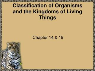 Classification of Organisms and the Kingdoms of Living Things
