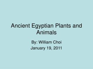 Ancient Egyptian Plants and Animals