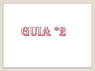 GUIA *2