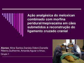 Alunos : Aline Santos,Daniela Didoni,Danielle Ribeiro,Guilherme, Amanda Aguiar e Artus. Grupo 1