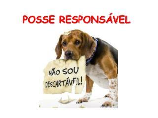 POSSE RESPONSÁVEL