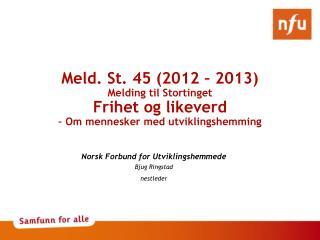 Norsk Forbund for Utviklingshemmede Bjug Ringstad nestleder