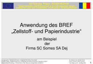 """Anwendung des BREF  """"Zellstoff- und Papierindustrie"""""""