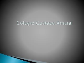 Colégio  G ustavo Amaral