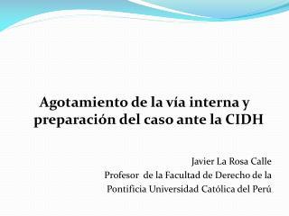 Agotamiento de la v�a interna y preparaci�n del caso ante la CIDH Javier La Rosa Calle