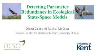 Detecting  Parameter  R edundancy  in  Ecological  State-Space  M odels