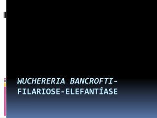 Wuchereria bancrofti -  Filariose-Elefantíase