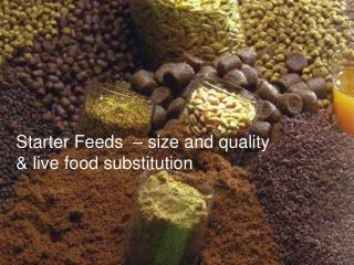 Starter Feeds  – size and quality & live food substitution