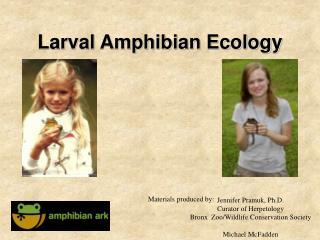 Larval Amphibian Ecology