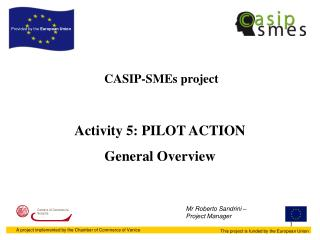 CASIP-SMEs project