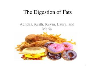 The Digestion of Fats