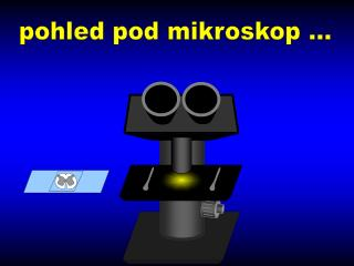 pohled pod mikroskop ...