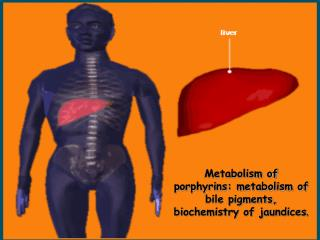 Metabolism of porphyrins: metabolism of bile pigments, biochemistry of jaundices .