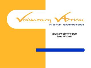 Voluntary Sector Forum June 11 th  2014