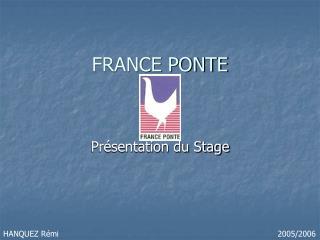 FRANCE PONTE