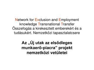 """Az """"Új utak az elsődleges munkaerő-piacra"""" projekt nemzetközi vetületei"""