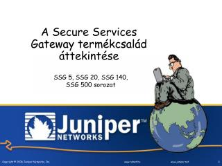 A  Secure Services Gateway  term�kcsal�d �ttekint�se
