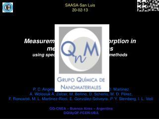 SAASA-San Luis 20-02-13
