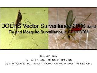 DOEHS Vector Surveillance 2006  Sand Fly and Mosquito Surveillance in CENTCOM