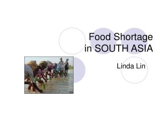 Food Shortage  in SOUTH ASIA