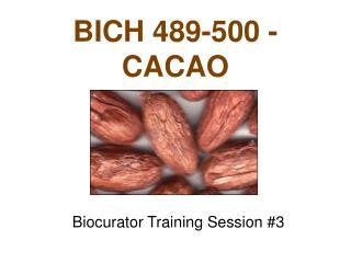 BICH 489-500 - CACAO