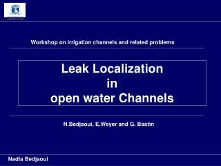 Leak Localization  in  open water Channels